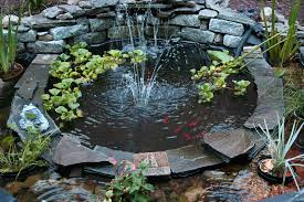 diy patio pond: image of gorgeous diy backyard pond