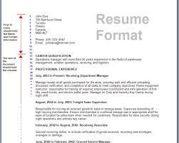 resume vba skills sample customer service resume resume vba skills 9 skills great to have on your rsum right now business resume