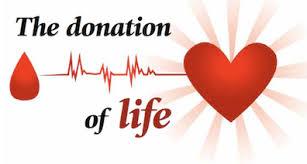 The Donation of Life - coastalmags.com