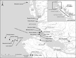 Decline of the Pelagic Cormorant in Western Queen Charlotte Strait ...