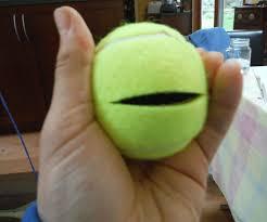 tennis ball secret container all