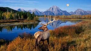 Image result for national park images