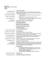 Example Resume  Professionals Resume Samples  professionals resume       professional experience Resume Writing