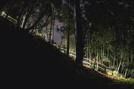 The best mountain <b>bike lights</b> in 2020 - MBR