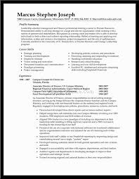 summary section of resume template resumeguide org resume summary section resume summary 20 resume summary examples for p7lrkols