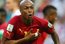 Image result for Andre Ayew