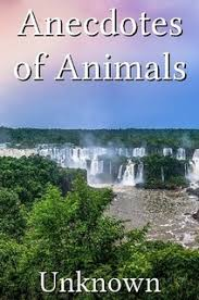 Anecdotes of Animals by <b>Unknown</b> (Paperback) - Lulu