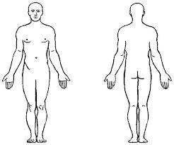 Resultado de imagen de Un ser humano