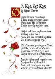 Image result for robert burns oh my love is like a red red rose poem