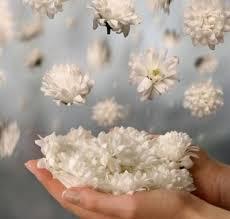 Image result for flores jesus