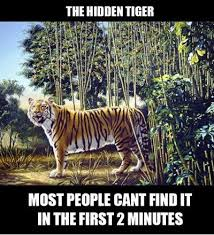 FunniestMemes.com - Funny Memes - [The Hidden Tiger, Most People ... via Relatably.com