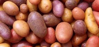 Bilderesultat for poteten
