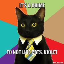 Business Cat Meme Generator - DIY LOL via Relatably.com