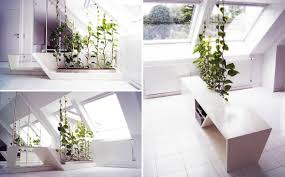 white kitchen windowed partition wall:  plants as partitions