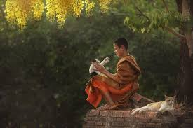 <b>Little monk</b> Happy - <b>Wishes</b> happy with the ordination of image look ...