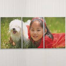 Split <b>Panel</b> Photo Canvas <b>Prints</b> - <b>3 Panels</b>