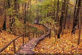 لكل محبي صور الطبيعة  اكبر تجميع لصور الطبيعة - صفحة 3 Images?q=tbn:ANd9GcTqWfvYQHV-7HaBSVaM9bLRLcX8rT1kt1D8QN--0L-7FqofAa51
