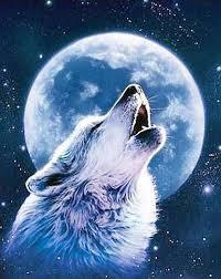Wolf and <b>Moon</b> (с изображениями) | Рисунки животных, Серые ...