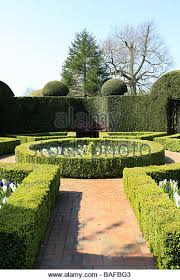 Small Picture Box Hedge Plant Stock Photos Box Hedge Plant Stock Images Alamy