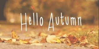 Image result for Fall picture