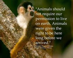 10 Inspiring Quotes about Animals | One Green Planet via Relatably.com