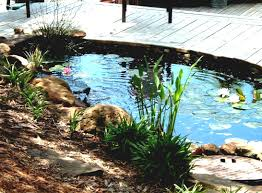 diy patio pond: outdoor and patio small backyard pond ideas mixed with green plants and rock edge arrangement