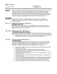 no experience sales resume   sales   sales   lewesmrsample resume  picture gallery of good sales associate