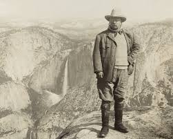 Image result for young theodore roosevelt