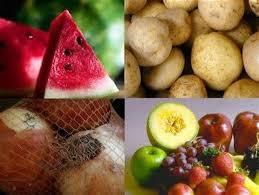 Image result for متخصص صنایع غذایی