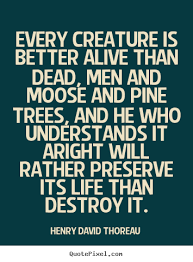 Moose Quotes And Sayings. QuotesGram via Relatably.com