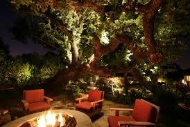view in gallery illuminated oak tree by an outdoor fire pit backyard landscape lighting