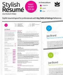images about creative cvs on pinterest   resume  creative    clean and professional resume  cv