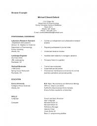 excellent resume format for creating a curriculum vitae sample format of simple resume format doc basic resume smlf basic resume format of a good curriculum
