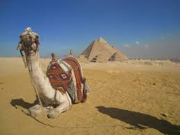 photo essay pyramids temples of exploring the great pyramids of giza by camel