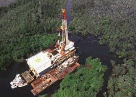 Image result for oil fields in nigeria