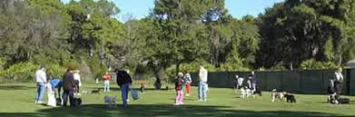Pinellas County, Florida, Park and Conservation Resources - <b>Dog</b> ...