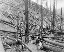 <b>Great</b> Fire of 1910 - Wikipedia
