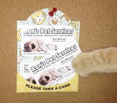 dog pet business card holder cat dog pet business card holder