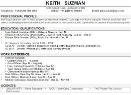 Professional CV Writing Service UK CV Experts Since      sasek cf Fashion CV Template