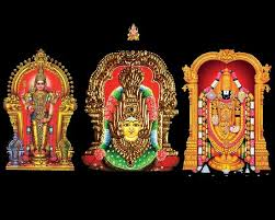 Image result for sri venkatachalapathy images