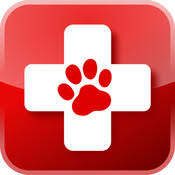 Image result for pet first aid trained