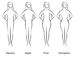 Image result for body shapes