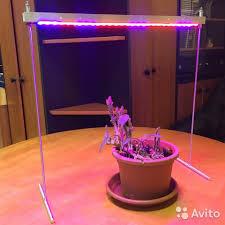 <b>Фитосветильник</b> для рассады досветки <b>e</b>-<b>Fito</b>-<b>220</b>-<b>50</b> купить в ...