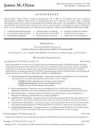 Sample Resume Summary For Accounting. examples of resume summary i ...