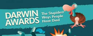 Image result for darwin awards