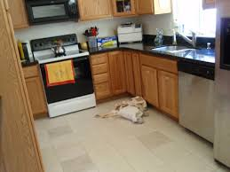 clean kitchen: the finished floor clean tile and grout