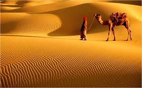 Image result for thar desert pics