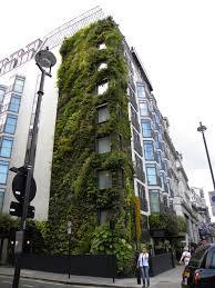 gallery outdoor living wall featuring:  images about amazing living walls on pinterest green green walls and toronto canada