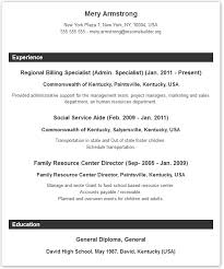 Resume Format Example - Ziptogreencom. Resume Samples: The ... Resume Format - Chronological, Functional or Targeted?