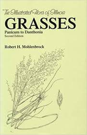 Amazon.com: Grasses: Panicum to Danthonia (The Illustrated Flora ...